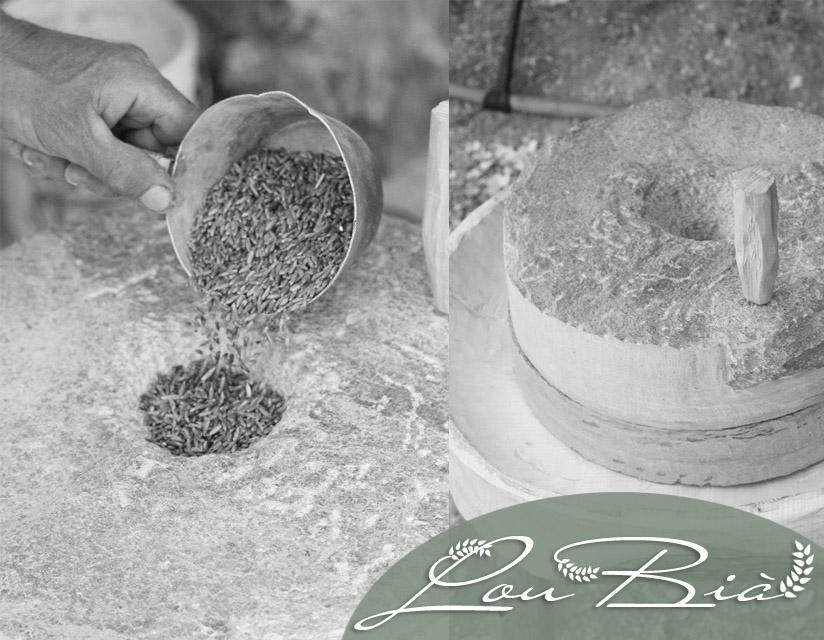 Corsi e attività. Costruire una piccola macina in pietra. Dal chicco alla farina